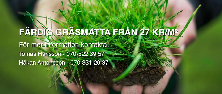 Köpa färdig gräsmatta