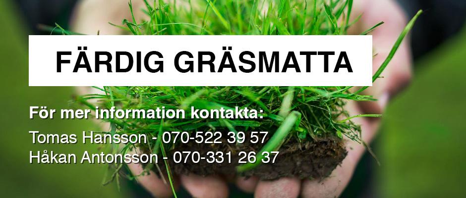 köpa rullgräs